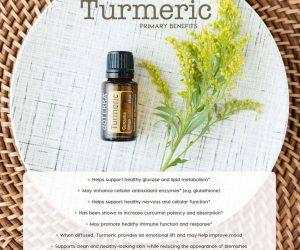 Oil Drops of Wisdom – Turmeric Oil