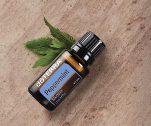 Oil Drops of Wisdom – Peppermint